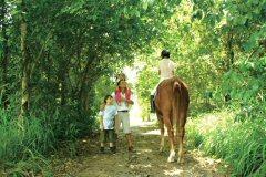 緑に囲まれた庭園を馬に乗って散策することもできる