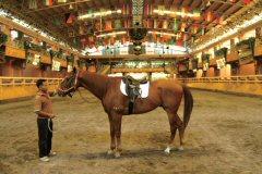 ドーム式の馬場アリーナ